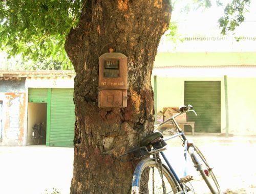 tree-postbox
