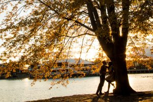 Where to take romantic pictures for Valentine's day-park