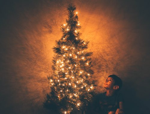 christmas photography - photojaanic-3