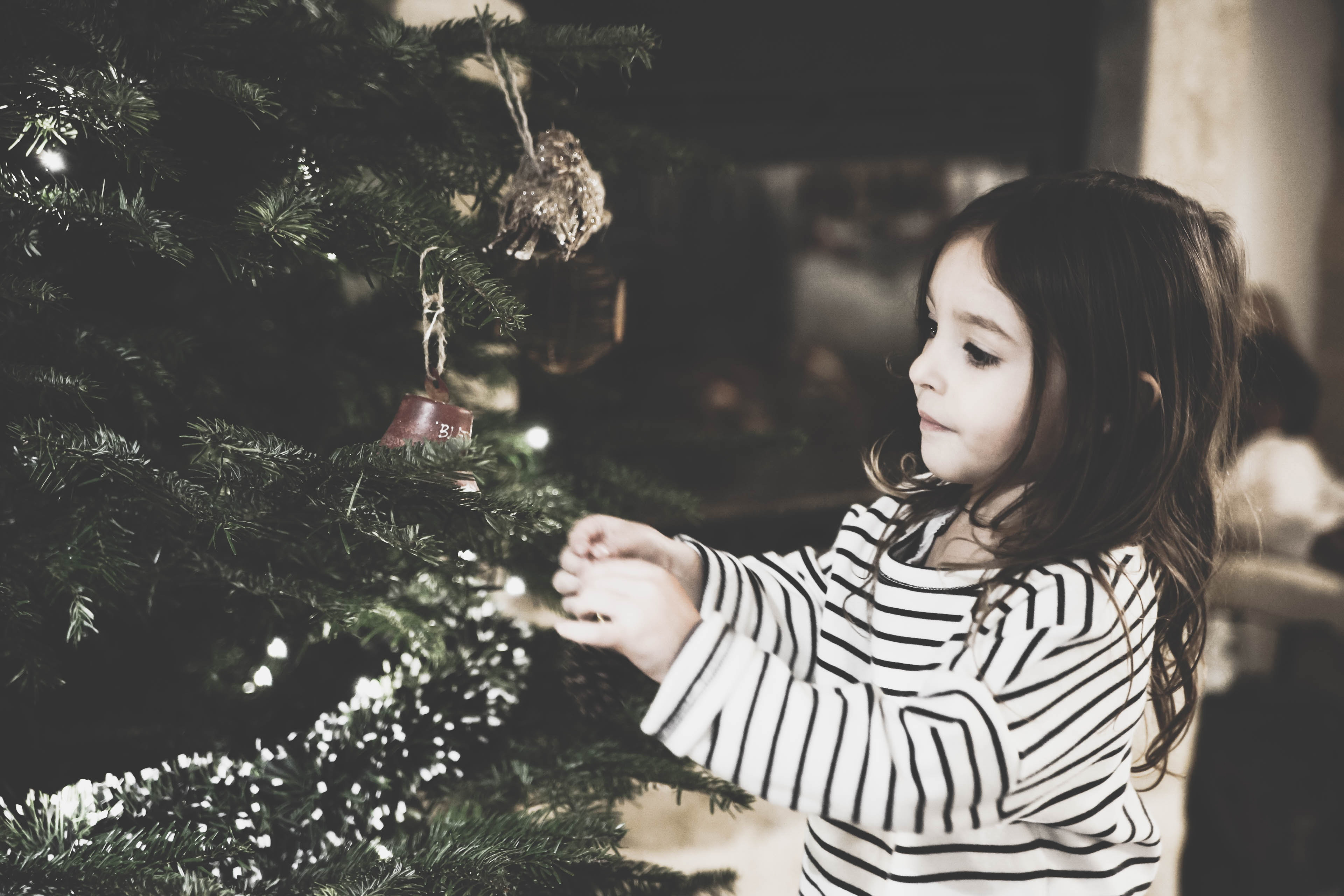 christmas photography - photojaanic-9