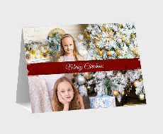 https://www.photojaanic.sg/sites/all/themes/bootstrap_business/images/products/newyearcards/Pine Tree_medium_1.jpg