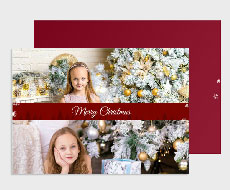 https://www.photojaanic.sg/sites/all/themes/bootstrap_business/images/products/newyearcards/Pine Tree_medium_4.jpg