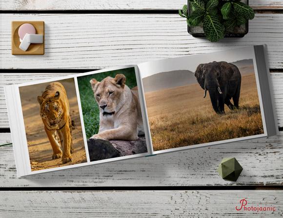 create series on hardcover photobooks