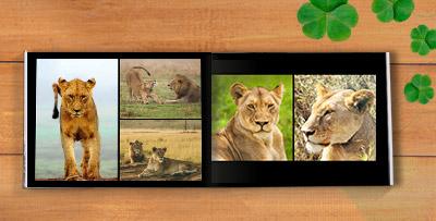 handcrafted premium photo albums